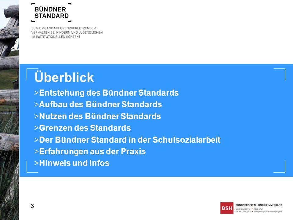 Überblick >Entstehung des Bündner Standards >Aufbau des Bündner Standards >Nutzen des Bündner Standards >Grenzen des Standards >Der Bündner Standard i
