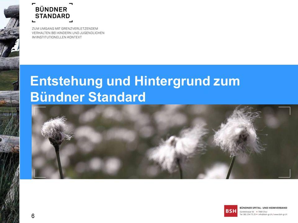 Entstehung und Hintergrund zum Bündner Standard 6