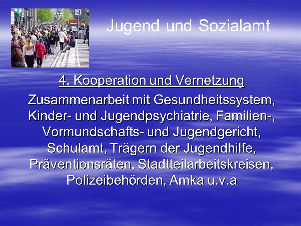 4. Kooperation und Vernetzung Zusammenarbeit mit Gesundheitssystem, Kinder- und Jugendpsychiatrie, Familien-, Vormundschafts- und Jugendgericht, Schul