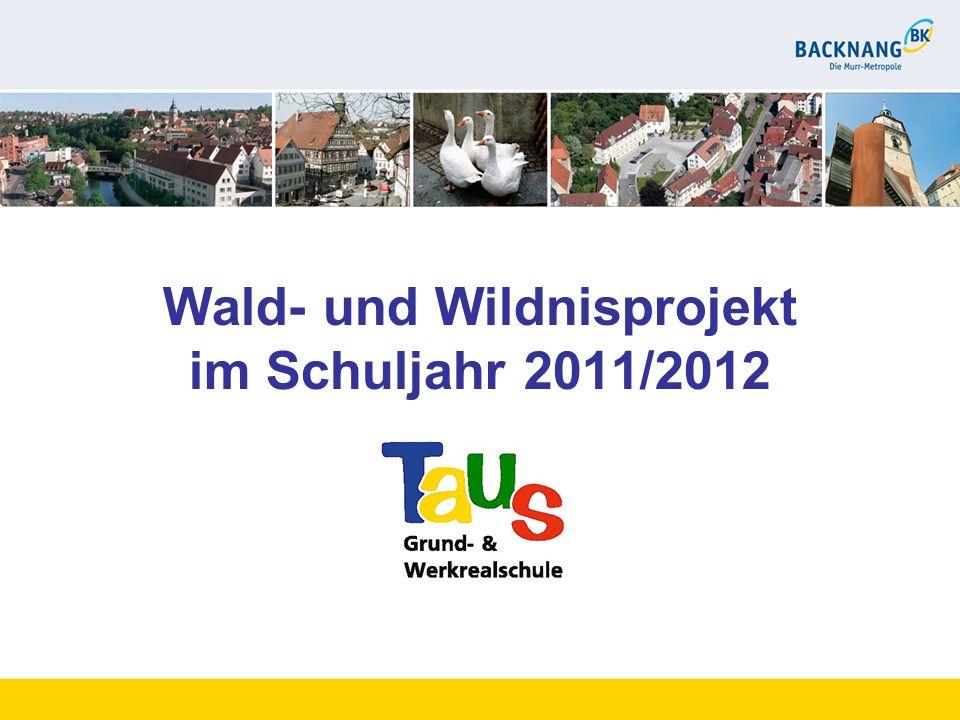 Wald- und Wildnisprojekt im Schuljahr 2011/2012