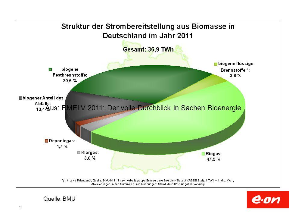 11 Quelle: BMU Aus: BMELV 2011: Der volle Durchblick in Sachen Bioenergie