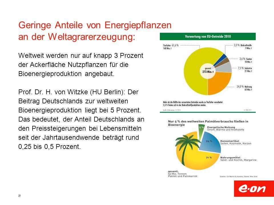 25 Weltweit werden nur auf knapp 3 Prozent der Ackerfläche Nutzpflanzen für die Bioenergieproduktion angebaut. Prof. Dr. H. von Witzke (HU Berlin): De