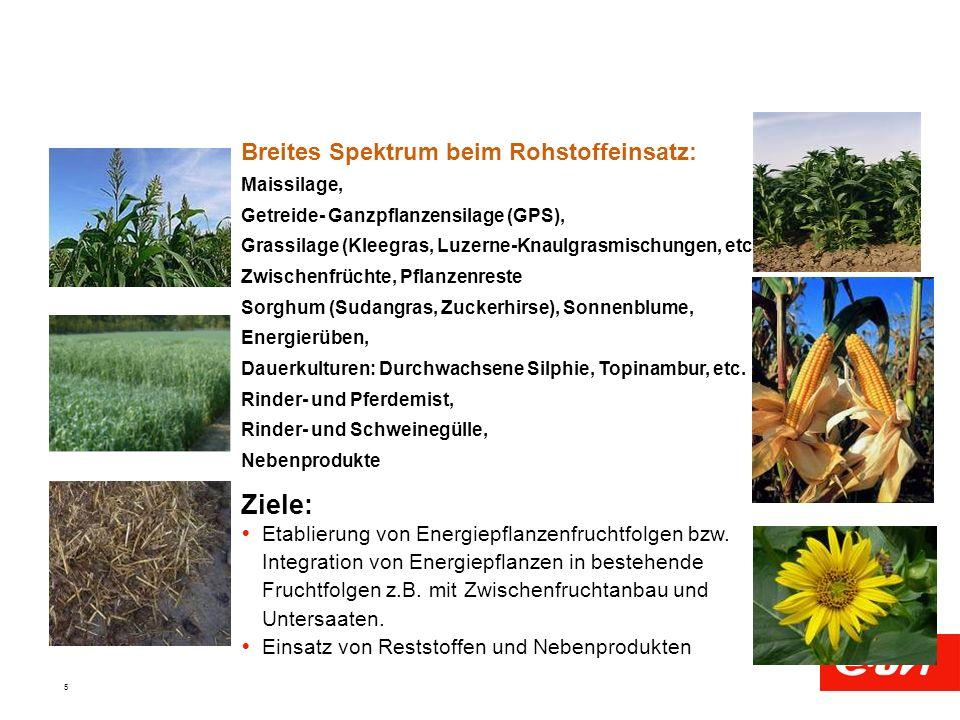 5 Breites Spektrum beim Rohstoffeinsatz: Maissilage, Getreide- Ganzpflanzensilage (GPS), Grassilage (Kleegras, Luzerne-Knaulgrasmischungen, etc.), Zwi