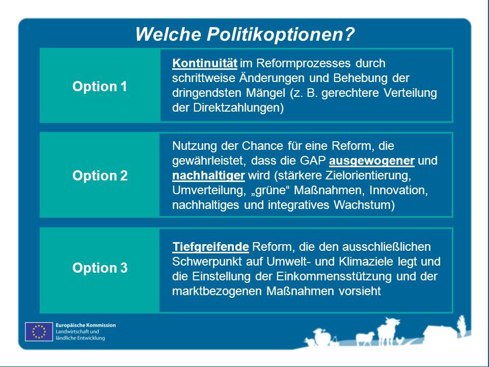 Welche Politikoptionen? Kontinuität im Reformprozesses durch schrittweise Änderungen und Behebung der dringendsten Mängel (z. B. gerechtere Verteilung