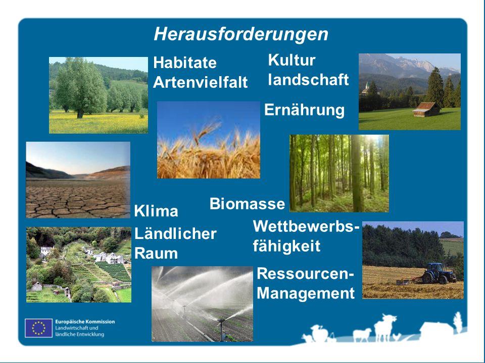Ernährung Habitate Artenvielfalt Wettbewerbs- fähigkeit Kultur landschaft Biomasse Klima Ländlicher Raum Ressourcen- Management Herausforderungen