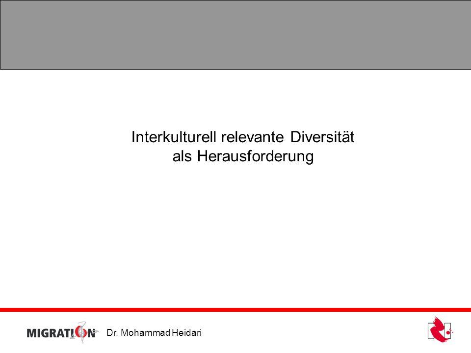 Dr. Mohammad Heidari Interkulturell relevante Diversität als Herausforderung