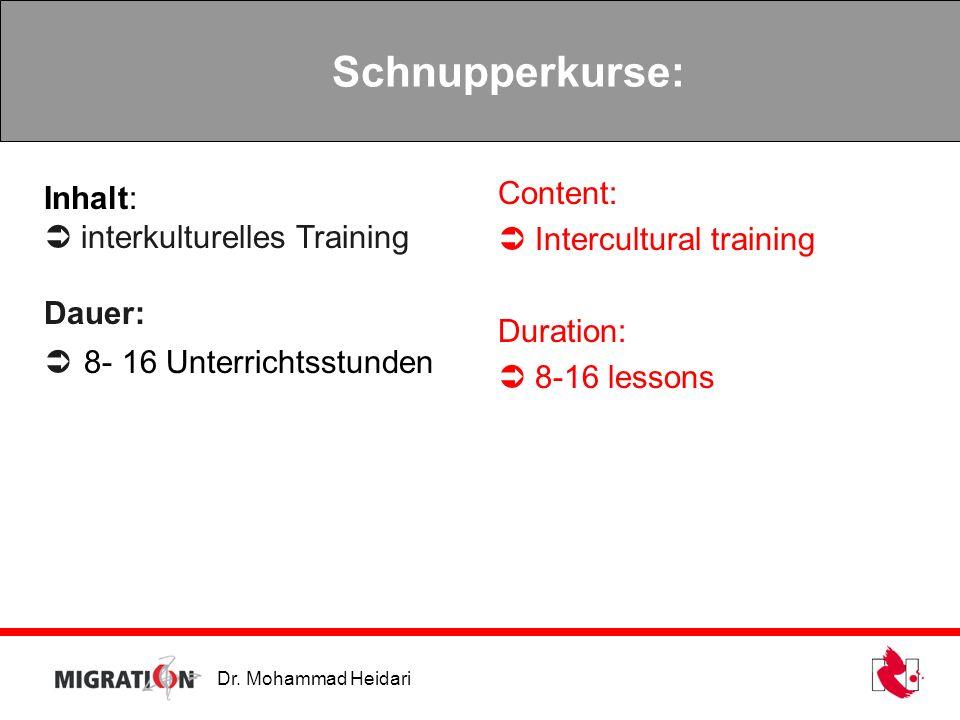 Dr. Mohammad Heidari Schnupperkurse: Inhalt: interkulturelles Training Dauer: 8- 16 Unterrichtsstunden Content: Intercultural training Duration: 8-16
