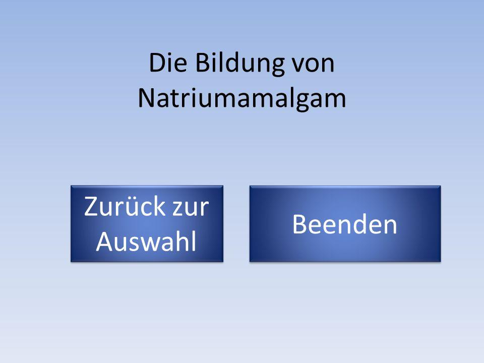 Die Bildung von Natriumamalgam Zurück zur Auswahl Zurück zur Auswahl Beenden