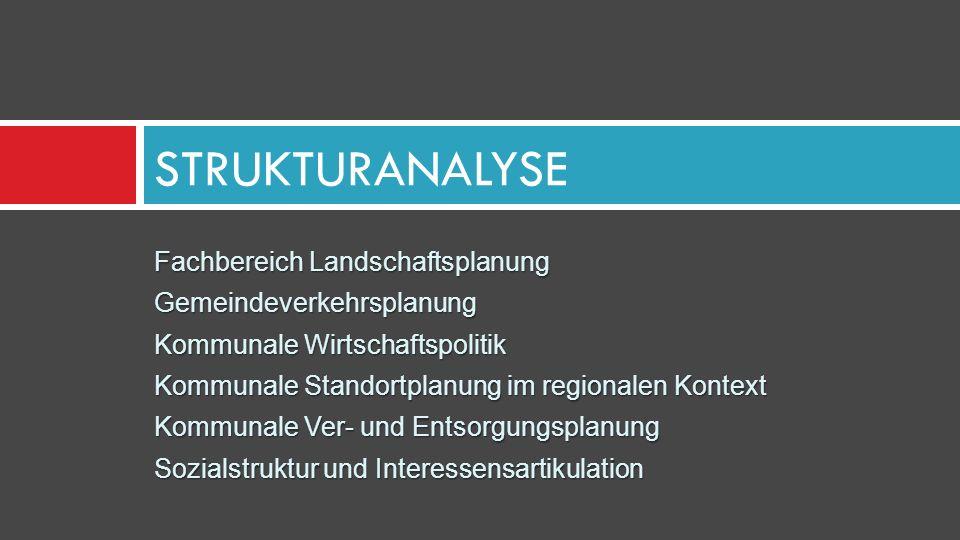 Fachbereich Landschaftsplanung Gemeindeverkehrsplanung Kommunale Wirtschaftspolitik Kommunale Standortplanung im regionalen Kontext Kommunale Ver- und Entsorgungsplanung Sozialstruktur und Interessensartikulation STRUKTURANALYSE