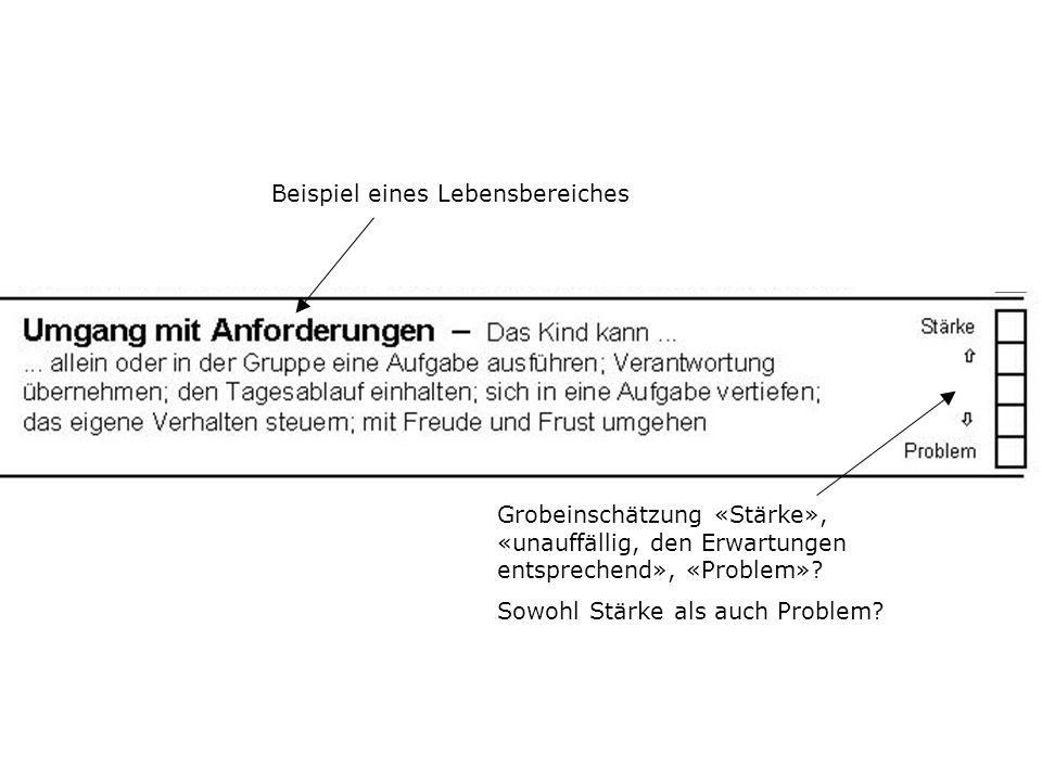 Beispiel eines Lebensbereiches Grobeinschätzung «Stärke», «unauffällig, den Erwartungen entsprechend», «Problem»? Sowohl Stärke als auch Problem?