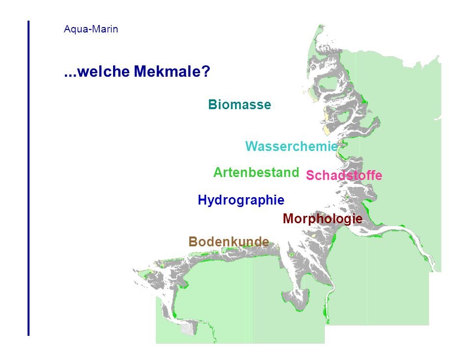 Aqua-Marin Artenbestand Bodenkunde Hydrographie Schadstoffe Morphologie Wasserchemie Biomasse...welche Mekmale?