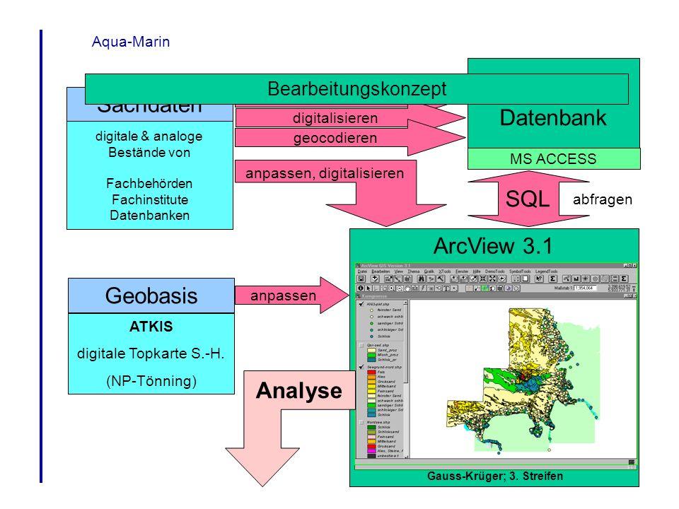 Aqua-Marin Sachdaten formatieren Projekt- Datenbank MS ACCESS digitale & analoge Bestände von Fachbehörden Fachinstitute Datenbanken digitalisieren Ge