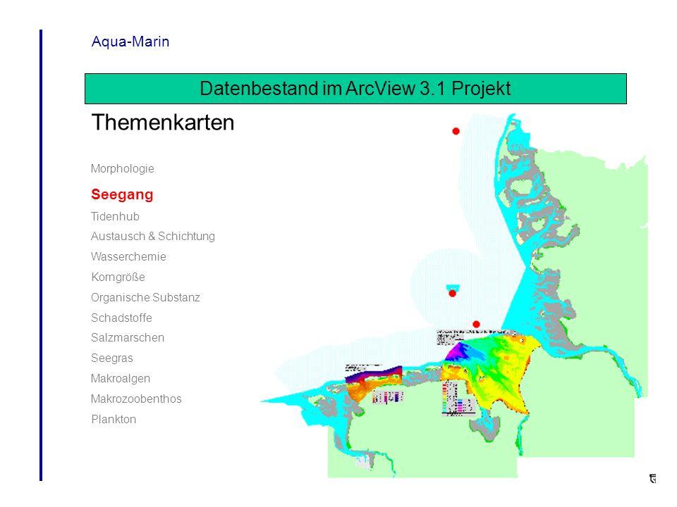 Aqua-Marin Datenbestand im ArcView 3.1 Projekt Themenkarten Morphologie Seegang Tidenhub Austausch & Schichtung Wasserchemie Korngröße Organische Subs