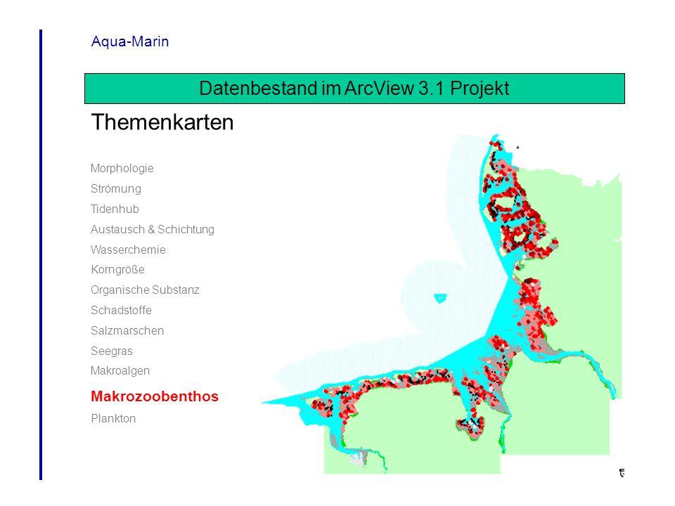 Aqua-Marin Datenbestand im ArcView 3.1 Projekt Themenkarten Morphologie Strömung Tidenhub Austausch & Schichtung Wasserchemie Korngröße Organische Sub