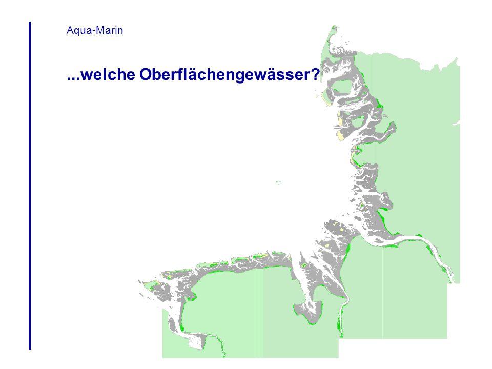 Aqua-Marin Datenbestand im ArcView 3.1 Projekt Themenkarten Morphologie Strömung Tidenhub Austausch & Schichtung Wasserchemie Korngröße Organische Substanz Schadstoffe Salzmarschen Seegras Makroalgen Makrozoobenthos Plankton