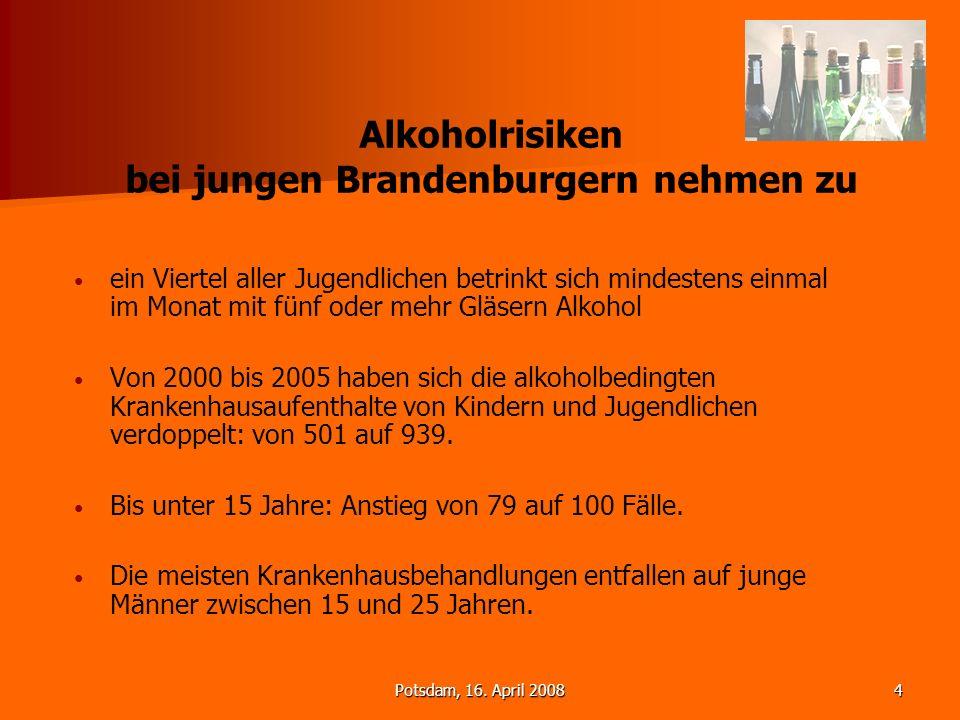 Potsdam, 16. April 20084 Alkoholrisiken bei jungen Brandenburgern nehmen zu ein Viertel aller Jugendlichen betrinkt sich mindestens einmal im Monat mi