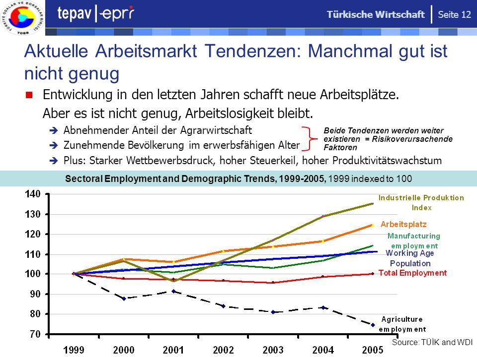 Türkische Wirtschaft Seite 12 Aktuelle Arbeitsmarkt Tendenzen: Manchmal gut ist nicht genug Sectoral Employment and Demographic Trends, 1999-2005, 199