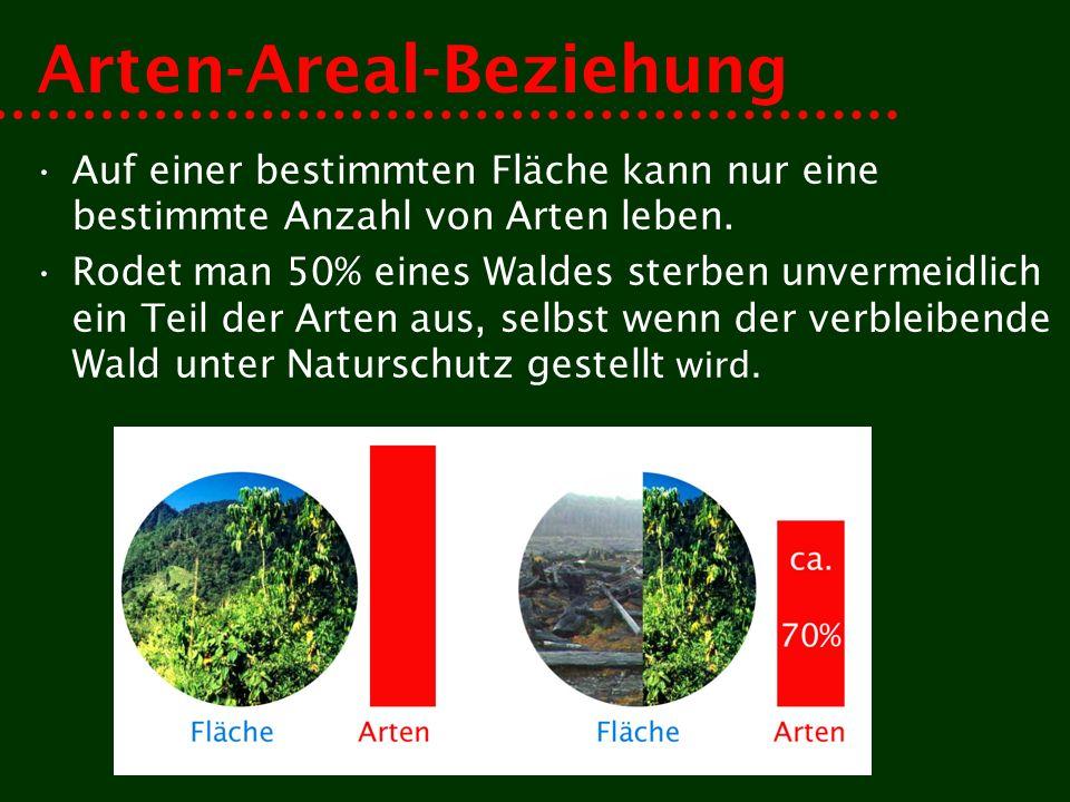 Arten-Areal-Beziehung Auf einer bestimmten Fläche kann nur eine bestimmte Anzahl von Arten leben. Rodet man 50% eines Waldes sterben unvermeidlich ein