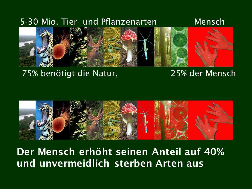 75% benötigt die Natur,25% der Mensch Der Mensch erhöht seinen Anteil auf 40% und unvermeidlich sterben Arten aus 5-30 Mio. Tier- und PflanzenartenMen