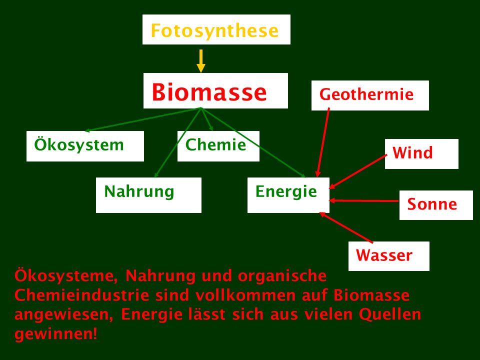 Biomasse Geothermie Wind Sonne Wasser Ökosystem Nahrung Chemie Energie Fotosynthese Ökosysteme, Nahrung und organische Chemieindustrie sind vollkommen auf Biomasse angewiesen, Energie lässt sich aus vielen Quellen gewinnen!