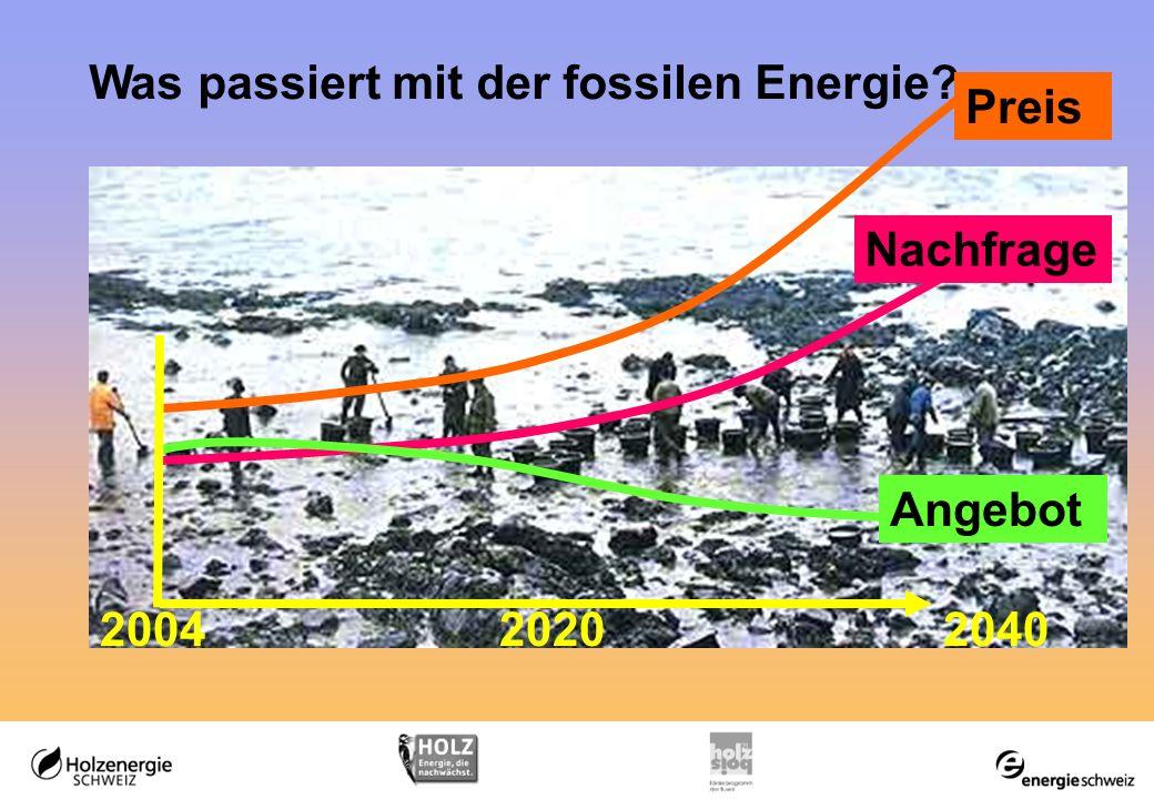 Was passiert mit der fossilen Energie Angebot 204020042020 Preis Nachfrage