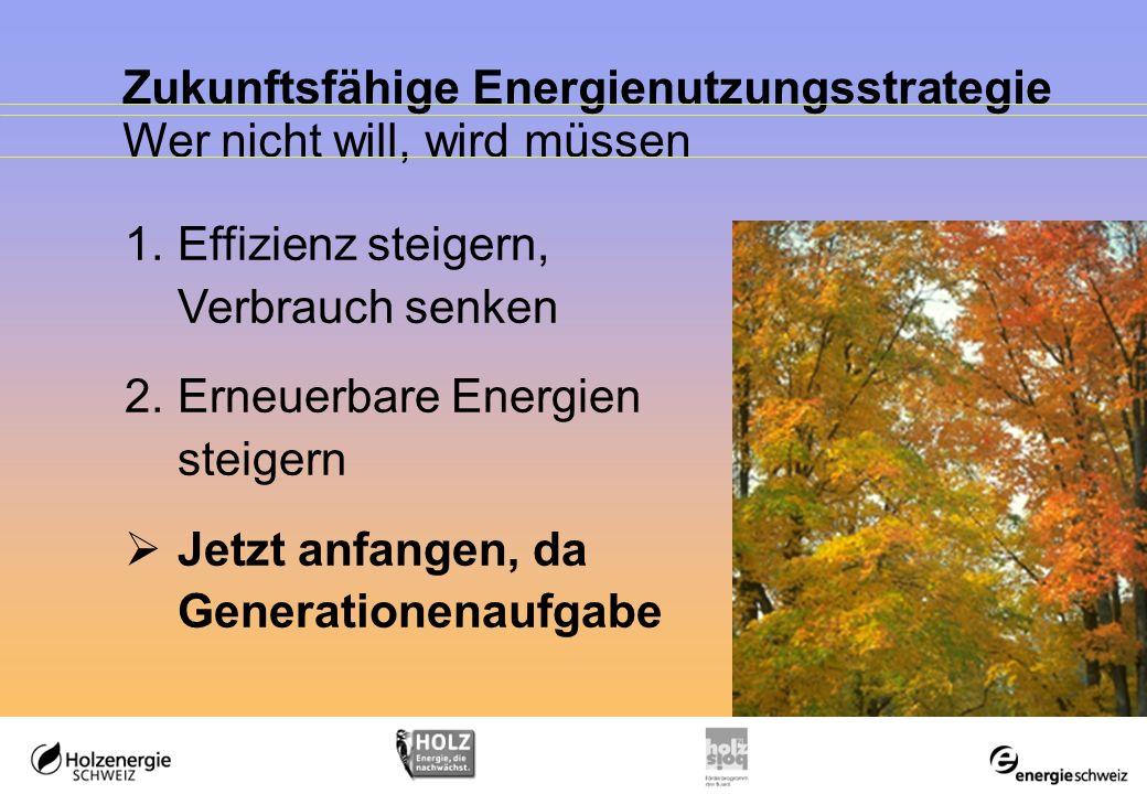 Zukunftsfähige Energienutzungsstrategie Wer nicht will, wird müssen 1.Effizienz steigern, Verbrauch senken 2.Erneuerbare Energien steigern Jetzt anfangen, da Generationenaufgabe