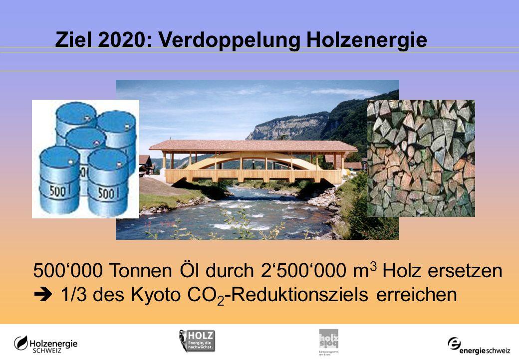 2005-2020: Herausforderung und Chance Was bedeutet 2500000 m 3 Holz mehr nutzen.