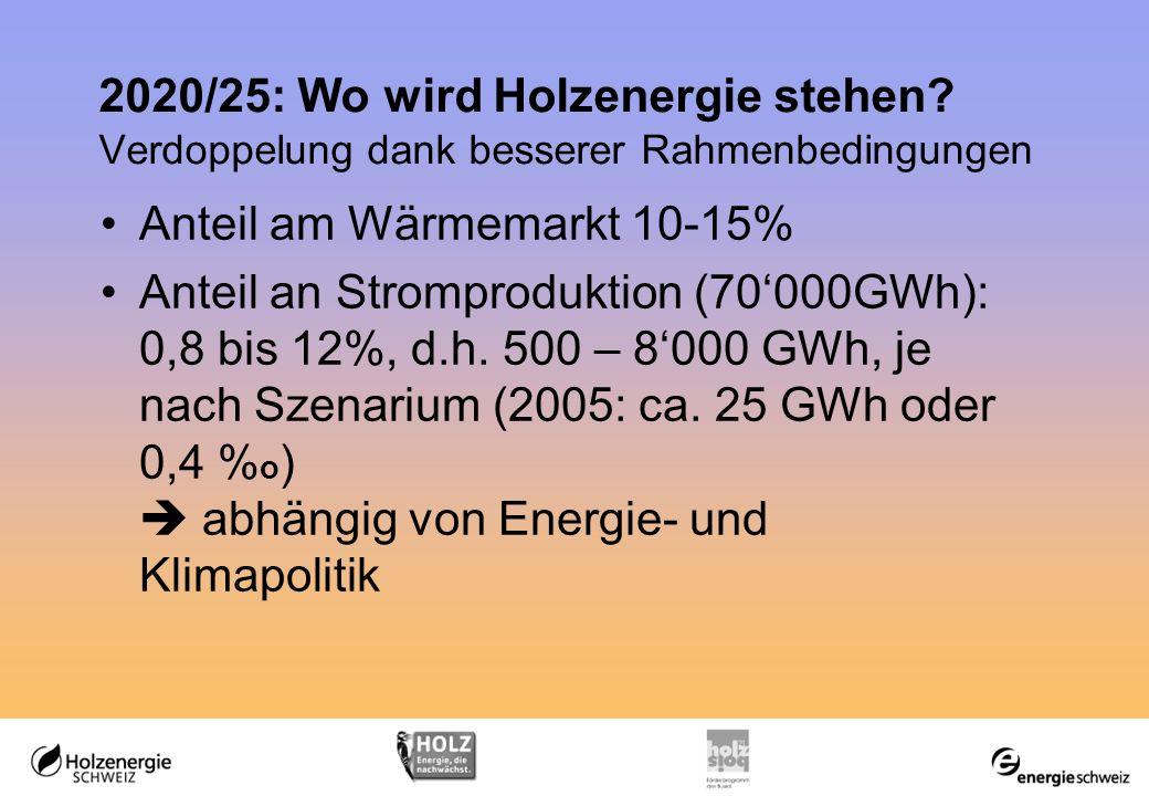 2020/25: Wo wird Holzenergie stehen.
