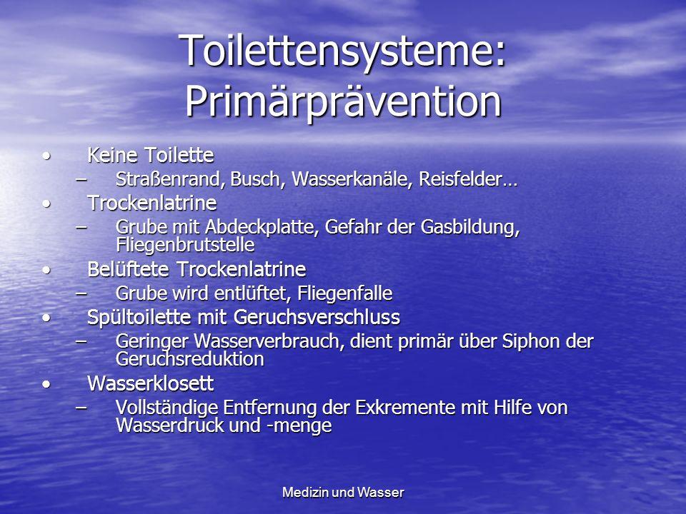 Toilettensysteme: Primärprävention Keine ToiletteKeine Toilette –Straßenrand, Busch, Wasserkanäle, Reisfelder… TrockenlatrineTrockenlatrine –Grube mit