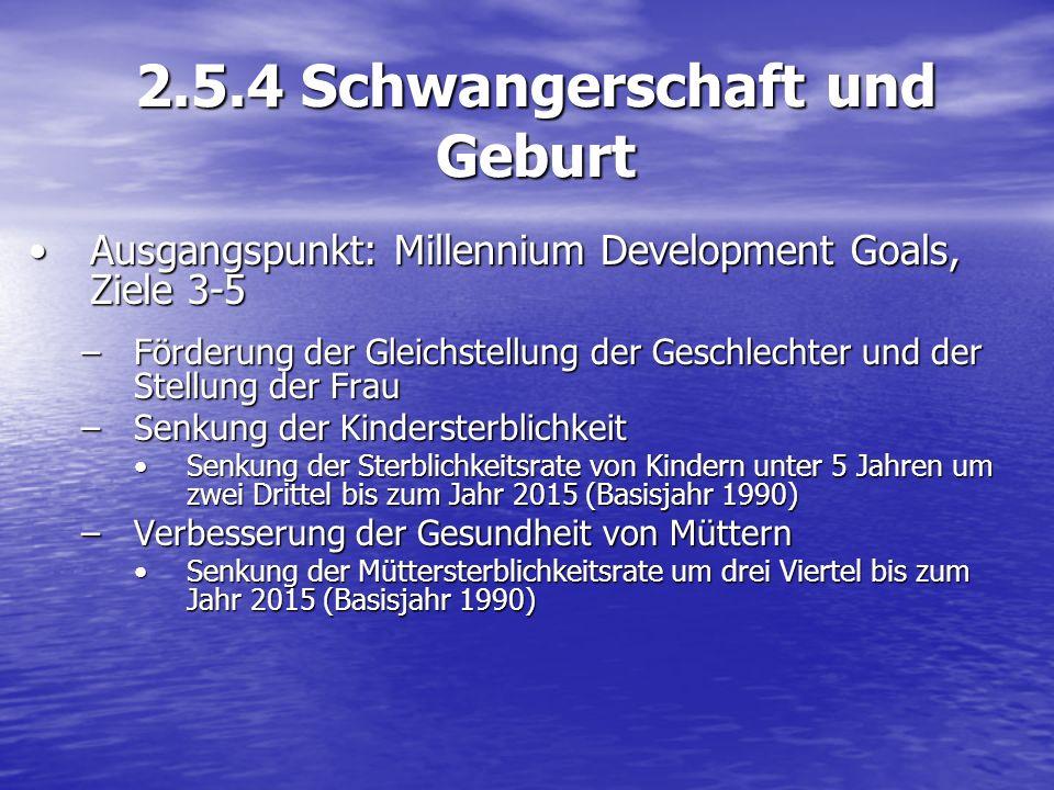 2.5.4 Schwangerschaft und Geburt Ausgangspunkt: Millennium Development Goals, Ziele 3-5Ausgangspunkt: Millennium Development Goals, Ziele 3-5 –Förderu