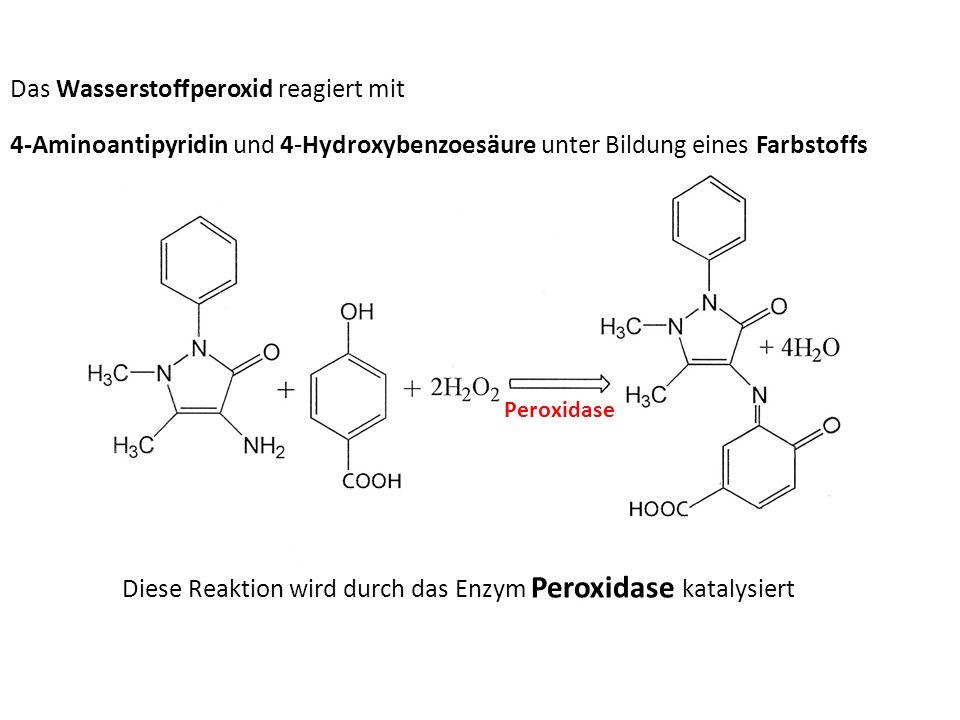 Das Wasserstoffperoxid reagiert mit 4-Aminoantipyridin und 4-Hydroxybenzoesäure unter Bildung eines Farbstoffs Peroxidase Diese Reaktion wird durch da
