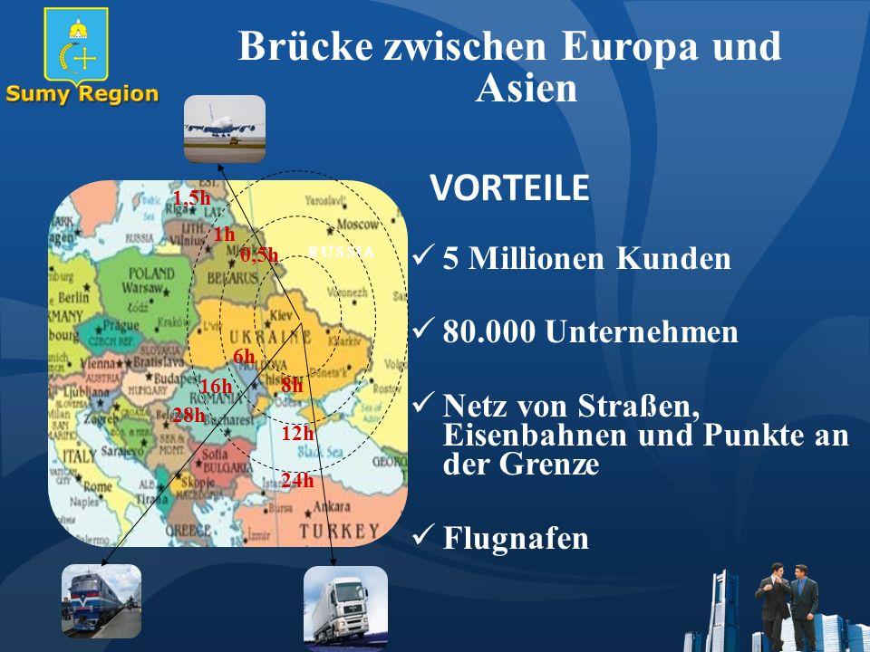 Brücke zwischen Europa und Asien VORTEILE 5 Millionen Kunden 80.000 Unternehmen Netz von Straßen, Eisenbahnen und Punkte an der Grenze Flugnafen RUSSIA 1,5h 1h1h 0,5h 6h6h 16h 28h 8h8h 24h 12h