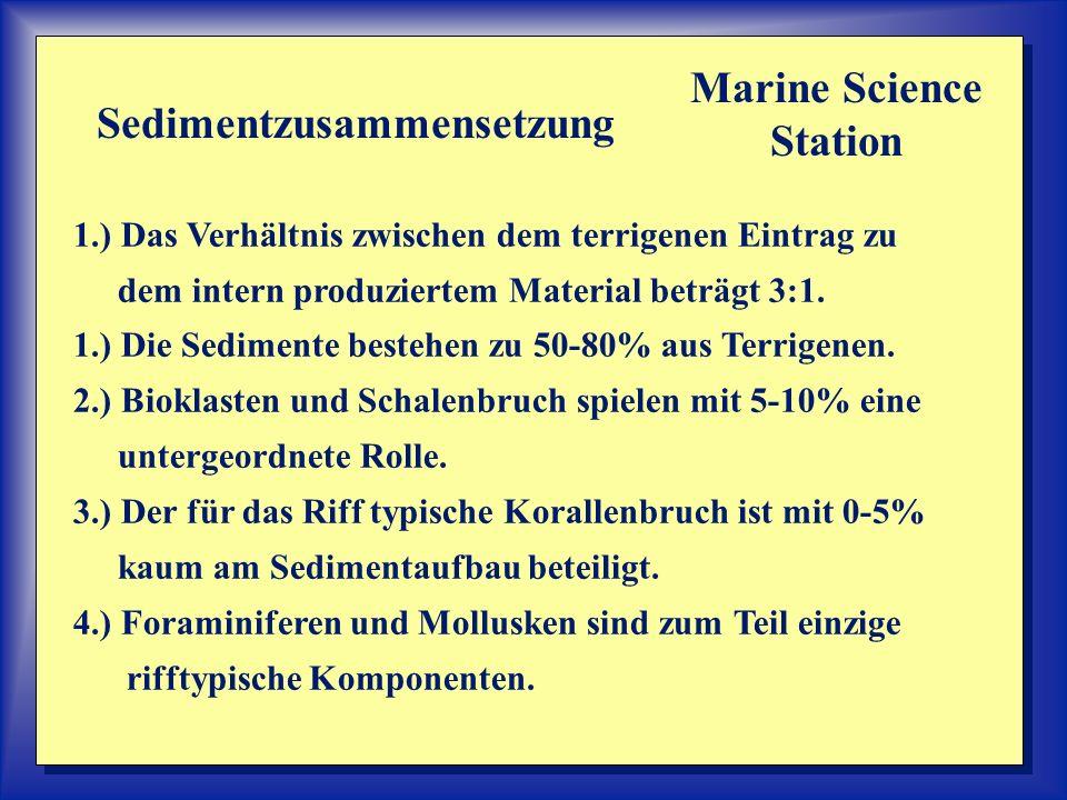1.) Das Verhältnis zwischen dem terrigenen Eintrag zu dem intern produziertem Material beträgt 3:1. 1.) Die Sedimente bestehen zu 50-80% aus Terrigene