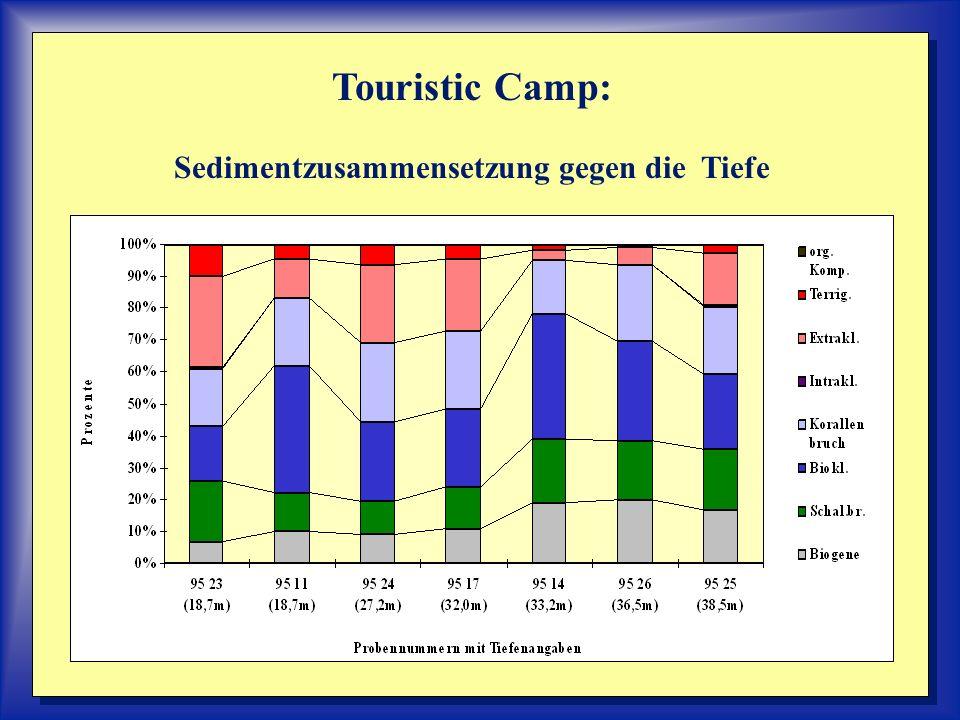 Touristic Camp: Sedimentzusammensetzung gegen die Tiefe