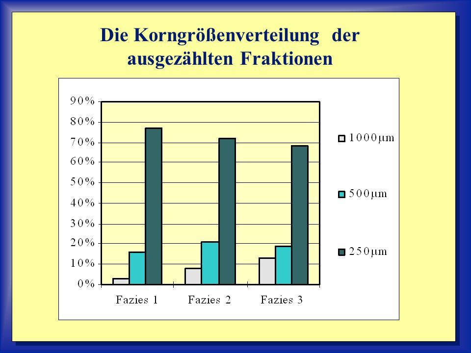 Die Korngrößenverteilung der ausgezählten Fraktionen