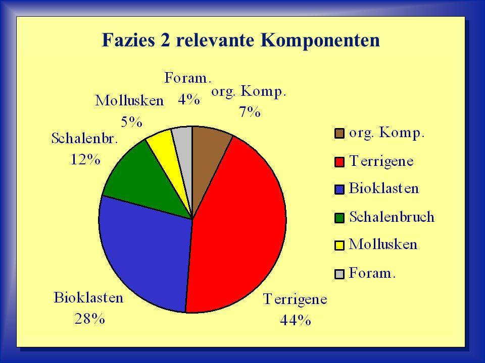 Fazies 2 relevante Komponenten