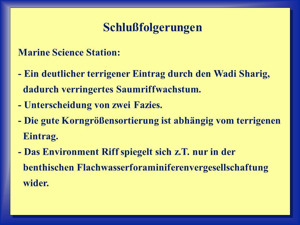 Schlußfolgerungen Marine Science Station: - Ein deutlicher terrigener Eintrag durch den Wadi Sharig, dadurch verringertes Saumriffwachstum. - Untersch