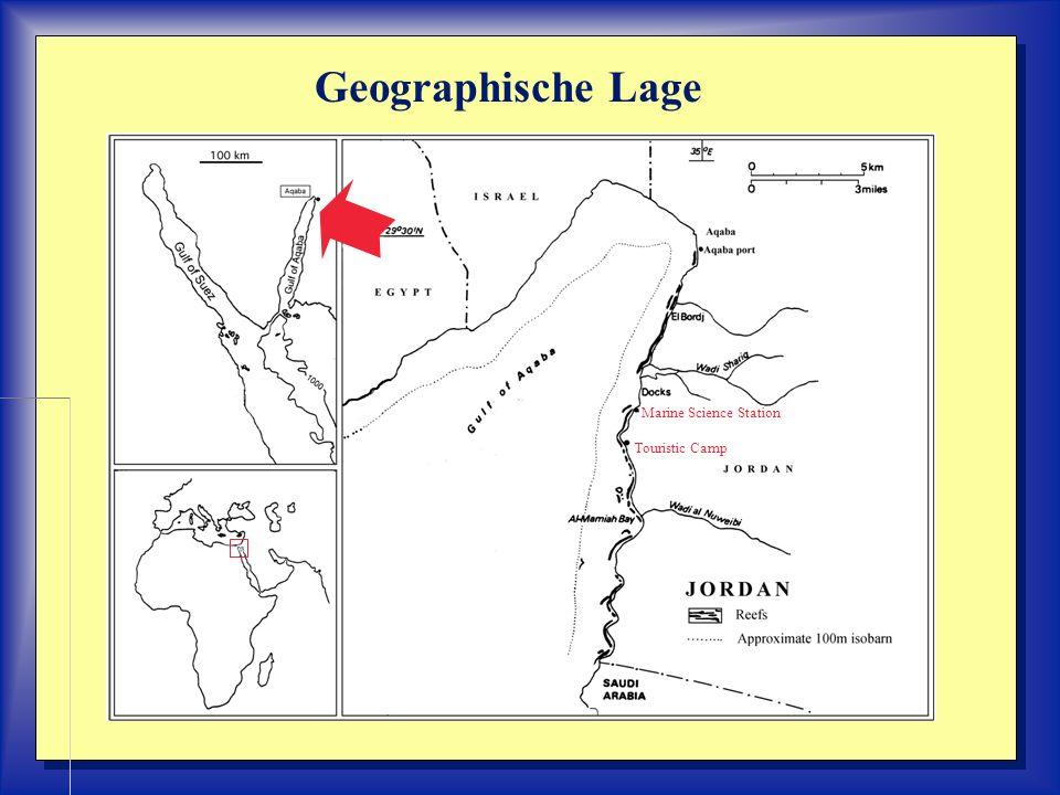 Untersuchungsbereiche: Marine Science Station (Wadi Sharig) Touristic Camp (Saumriff) WW
