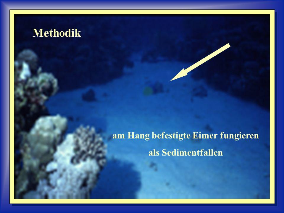 Methodik am Hang befestigte Eimer fungieren als Sedimentfallen