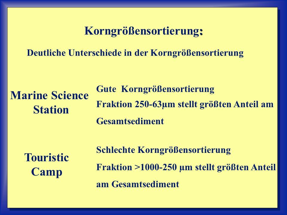 : Korngrößensortierung: Deutliche Unterschiede in der Korngrößensortierung Marine Science Station Gute Korngrößensortierung Fraktion 250-63µm stellt g