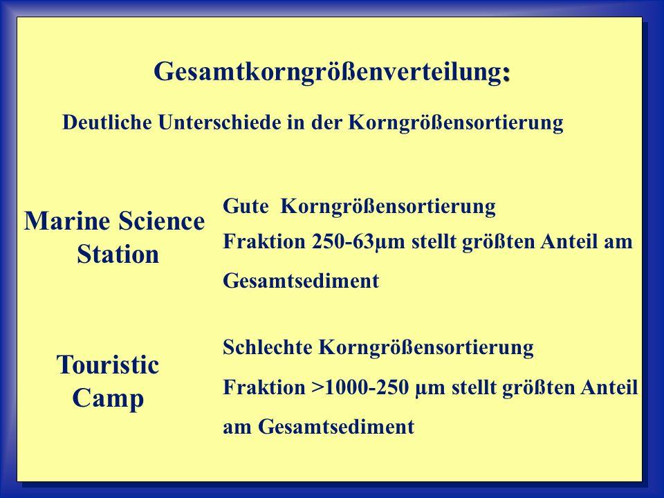 : Gesamtkorngrößenverteilung: Deutliche Unterschiede in der Korngrößensortierung Marine Science Station Gute Korngrößensortierung Fraktion 250-63µm st