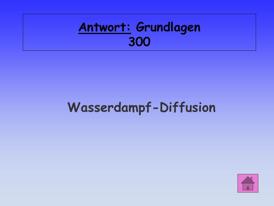 Grundlagen 300 Wie lautet der Fachbegriff für gegenseitiges Durchdringen oder Vermischen von Flüssigkeiten und Gasen?