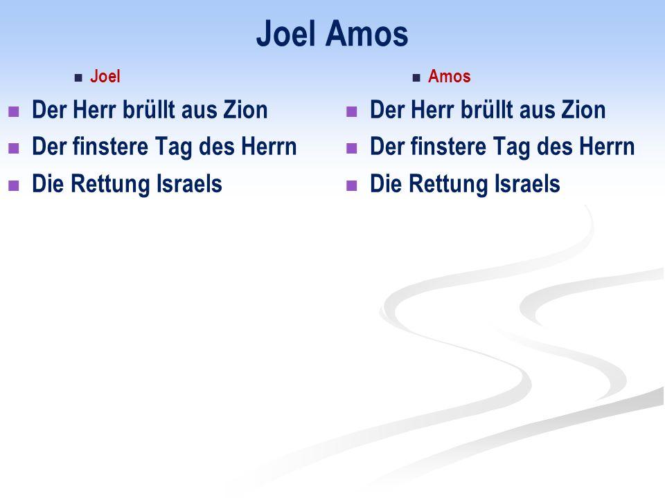 Joel Amos Joel Der Herr brüllt aus Zion Der finstere Tag des Herrn Die Rettung Israels Amos Der Herr brüllt aus Zion Der finstere Tag des Herrn Die Rettung Israels