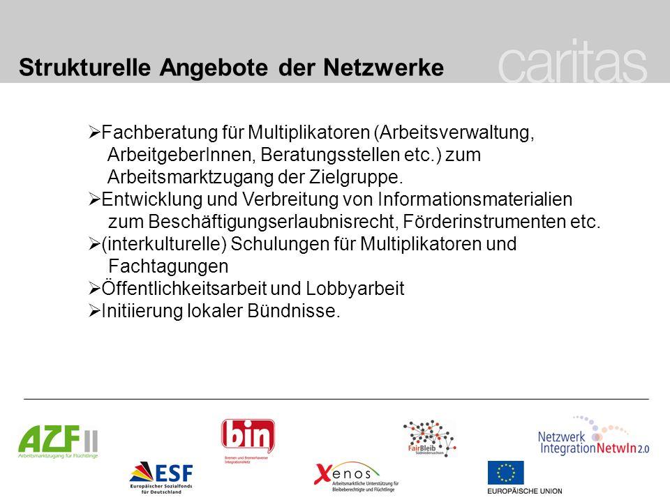 Strukturelle Angebote der Netzwerke Fachberatung für Multiplikatoren (Arbeitsverwaltung, ArbeitgeberInnen, Beratungsstellen etc.) zum Arbeitsmarktzuga