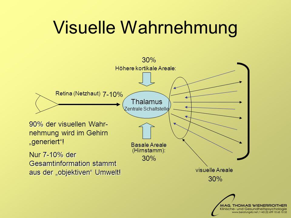 Visuelle Wahrnehmung Thalamus Zentrale Schaltstelle Höhere kortikale Areale: Basale Areale (Hirnstamm): visuelle Areale Retina (Netzhaut) 90% 90% der visuellen Wahr- nehmung wird im Gehirn generiert.