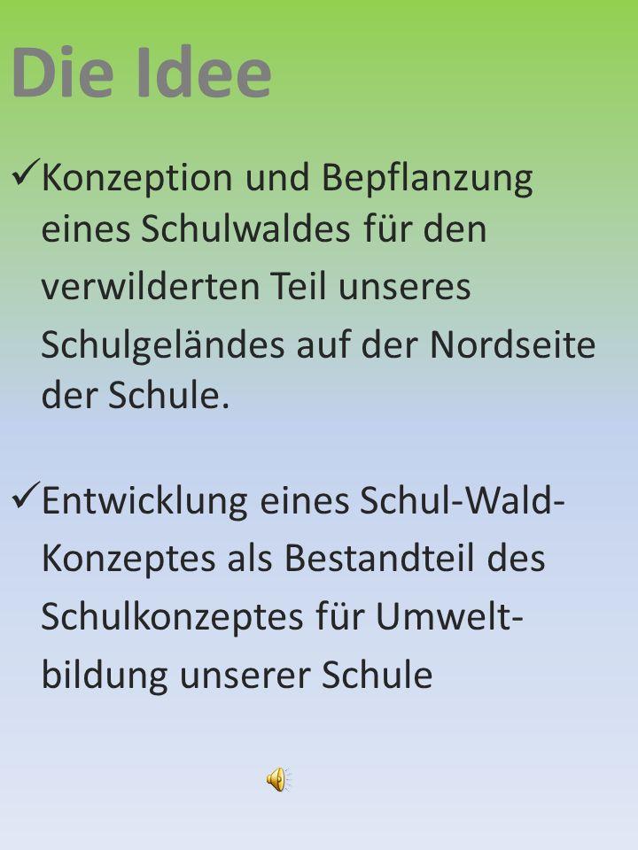 Projekt Wald 2100 Der Schulwald