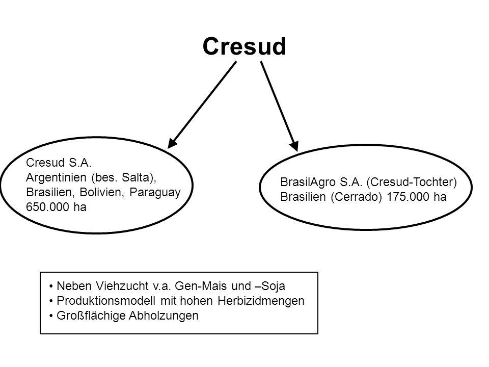 Cresud Cresud S.A. Argentinien (bes. Salta), Brasilien, Bolivien, Paraguay 650.000 ha BrasilAgro S.A. (Cresud-Tochter) Brasilien (Cerrado) 175.000 ha