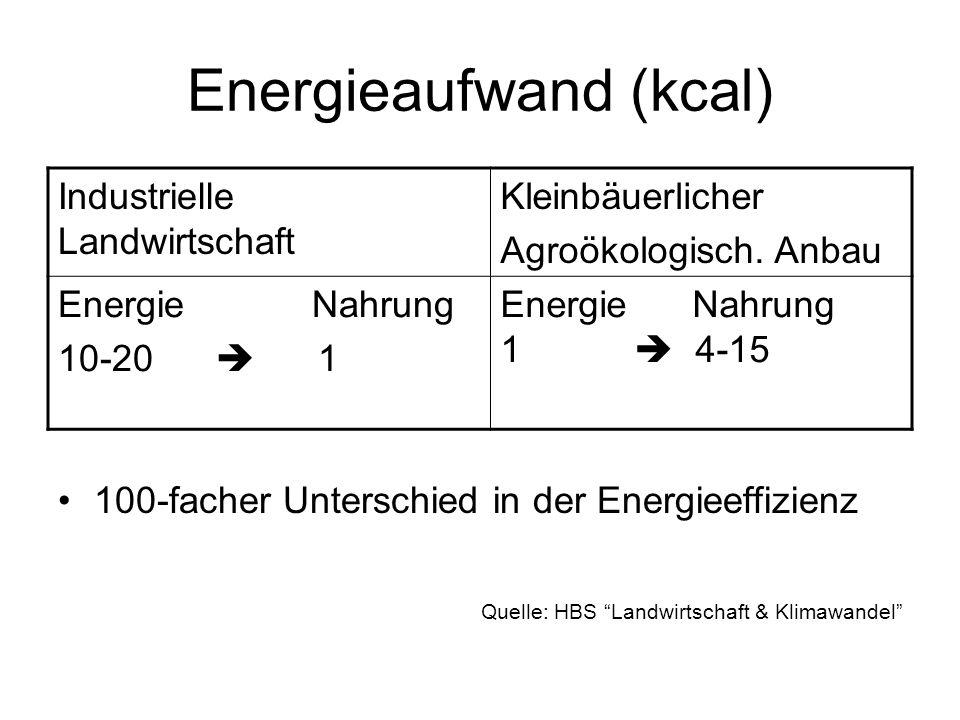 Energieaufwand (kcal) Industrielle Landwirtschaft Kleinbäuerlicher Agroökologisch. Anbau Energie Nahrung 10-20 1 EnergieNahrung 1 4-15 100-facher Unte
