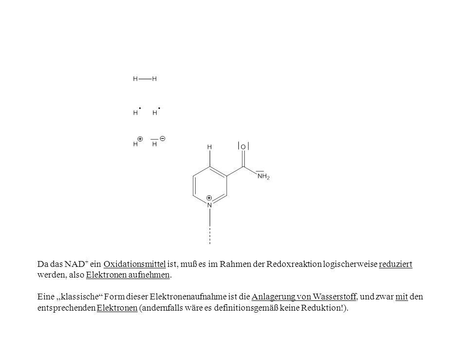 Da das NAD + ein Oxidationsmittel ist, muß es im Rahmen der Redoxreaktion logischerweise reduziert werden, also Elektronen aufnehmen. Eine klassische