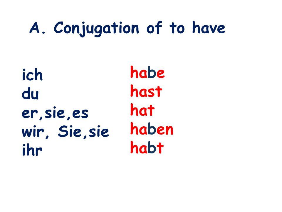 A. Conjugation of to have ich du er,sie,es wir, Sie,sie ihr habe hast hat haben habt